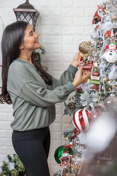 12.18.19 - Vanessa's Christmas Photo Session 2019 - 36.jpg
