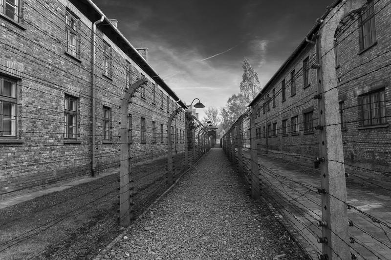 Auschwitz-Birkenau (39 of 79).jpg