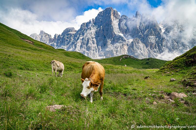 Dolomites_Italy-2.jpg