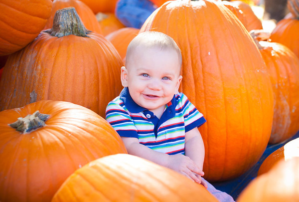 William Pumpkin Patch 2013