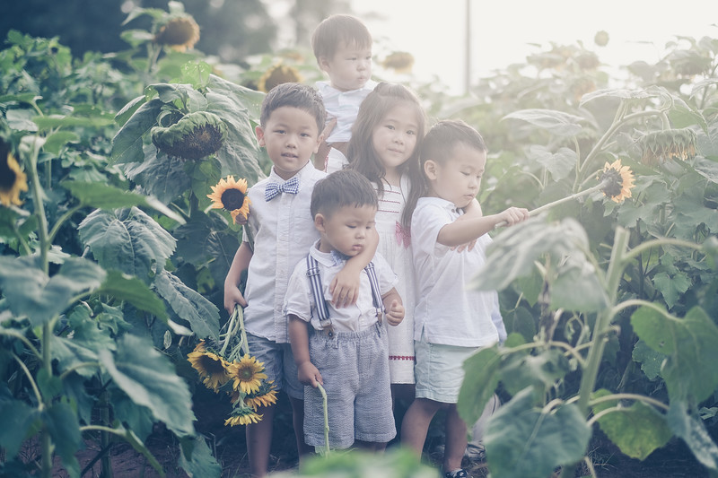 2019_07_14 Sunflower Farm-8221.jpg