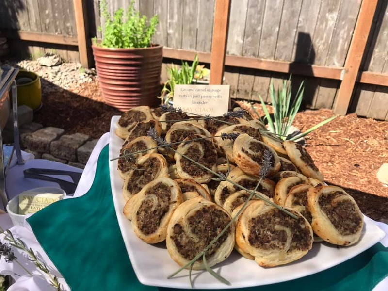 Camel roulade with lavender.jpg