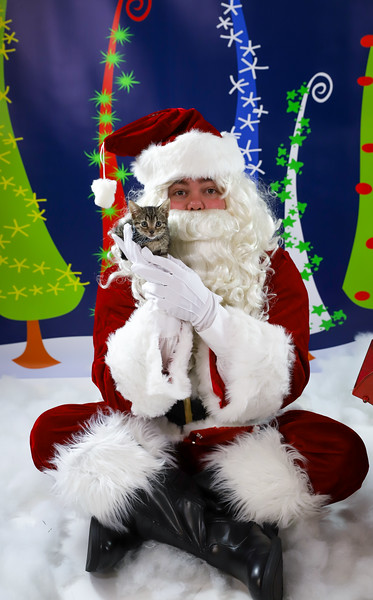 Alicia Hanes - Pet Pics with Santa