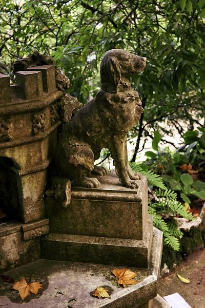 V areálu Quinta de Regaleira narazíte na nejrůznější sochy a sošky. Včetně soch psů.