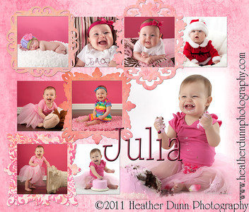Julia's First Year