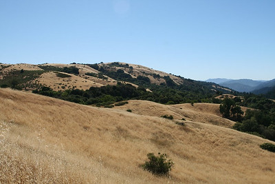 FOMFOK - Montebello Open Space Preserve