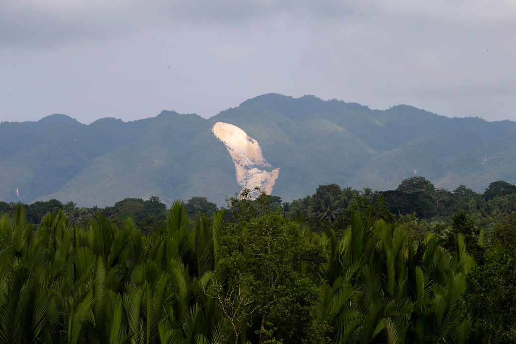 . A landslide which was caused  by Tuesday\'s 7.2-magnitude earthquake is seen from Cortes township, Bohol province in central Philippines Wednesday Oct. 16, 2013.   (AP Photo/Bullit Marquez)