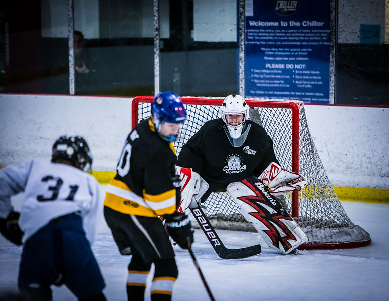 Bruins2-563.jpg