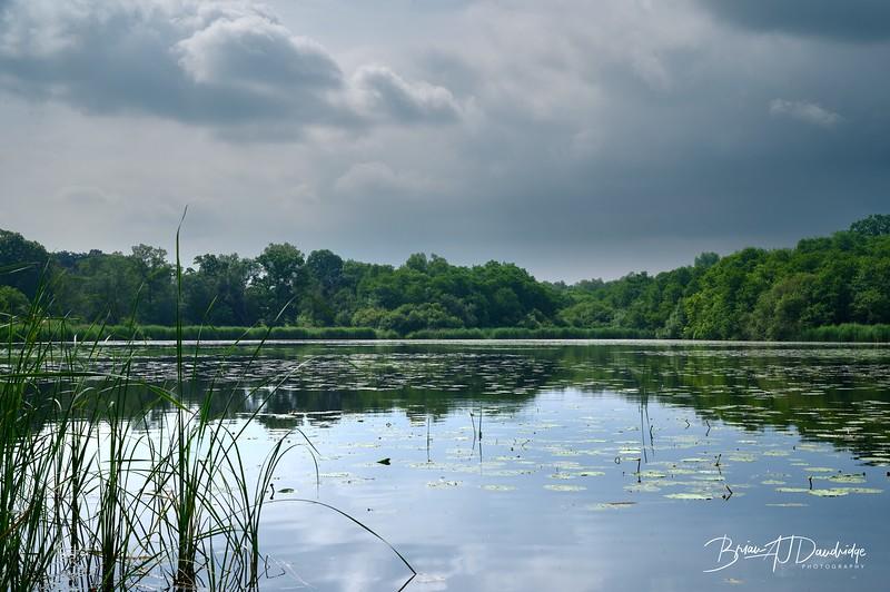 Burton Mill Pond-1923 - 9-19 am.jpg