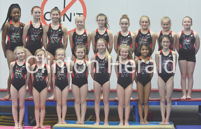 Great River Gymnastics 2019