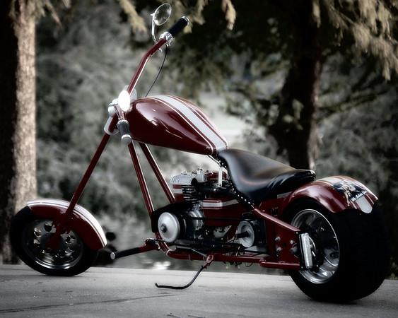 Richard Wilkerson - Mini Chopper