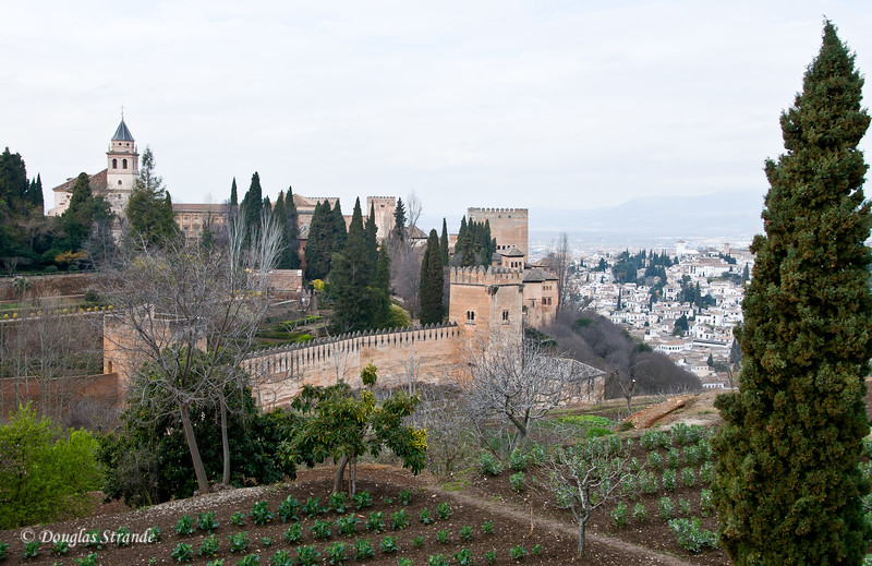 Fri 3/11 at La Alhambra in Grenada: Alhambra walls, city in the background