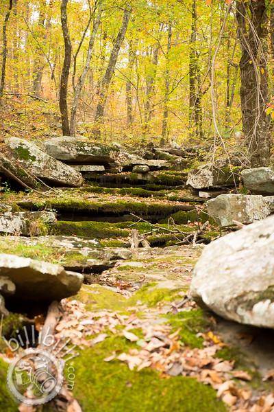 Indian Creek With Masons-40.JPG