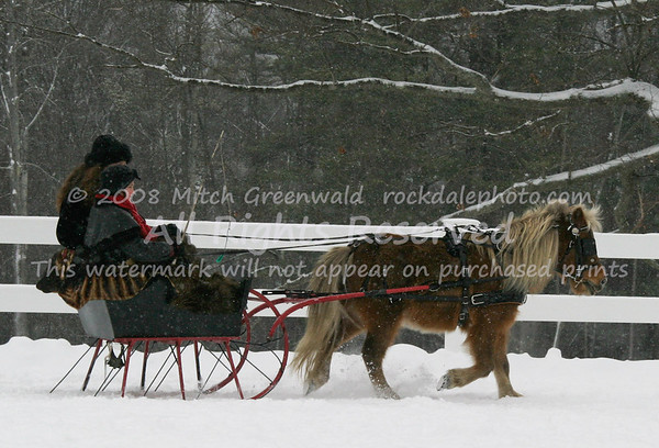 Colonial Carriage Sleigh Rally, 1/18/09