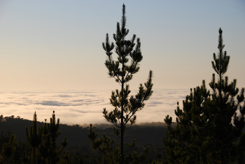 Off in the distance, the fog rolls in...  © 2007 Brian Neal