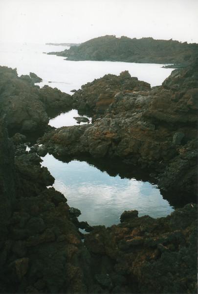 0531 - Tide pools