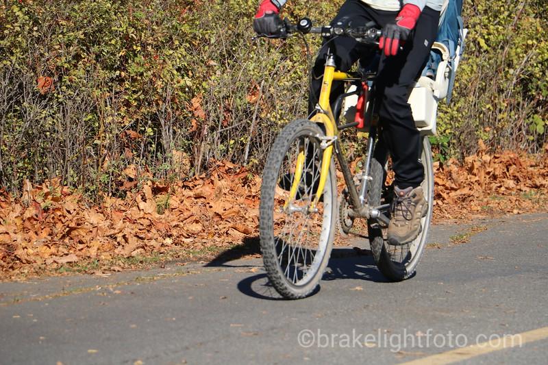Biking on Galloping Goose Trail