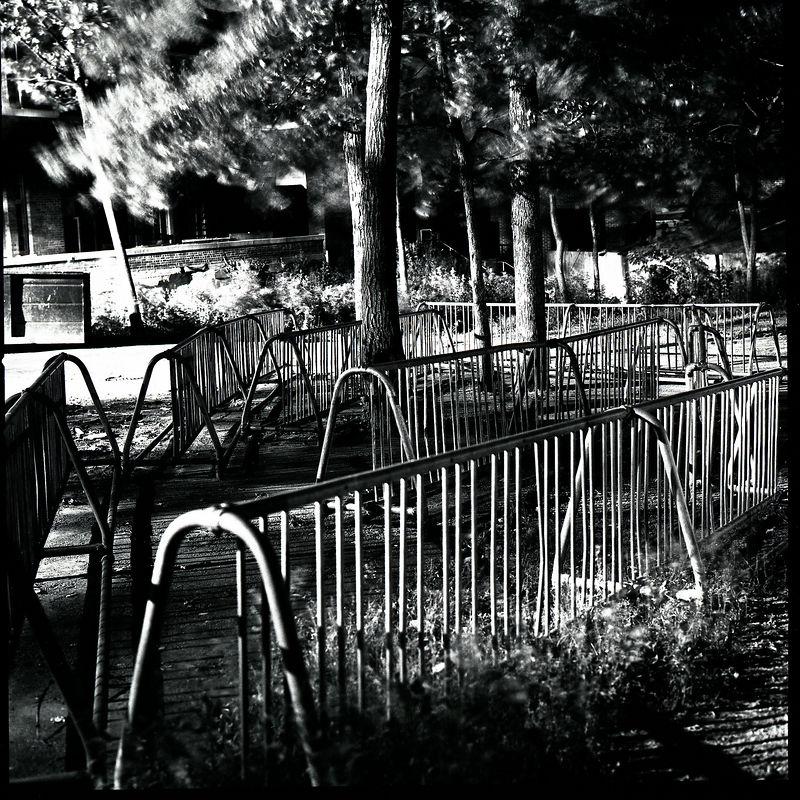 Bike racks HP.jpg
