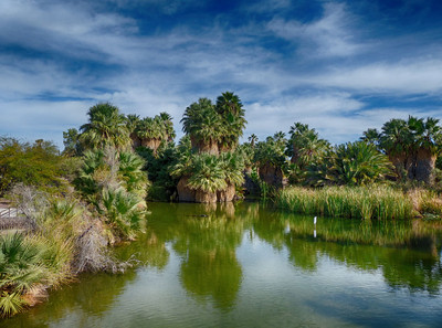 Awesome Arizona