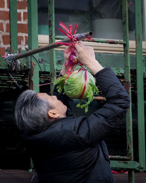 Mongolian February / Chinatown