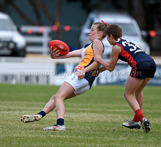 Padthaway/Lucindale Junior Colts - Div 2 Final