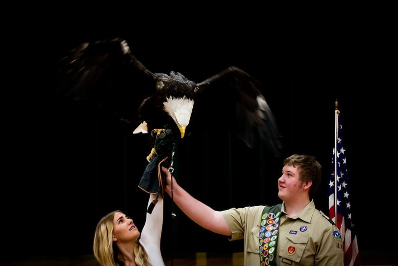 martin eagle-34.jpg