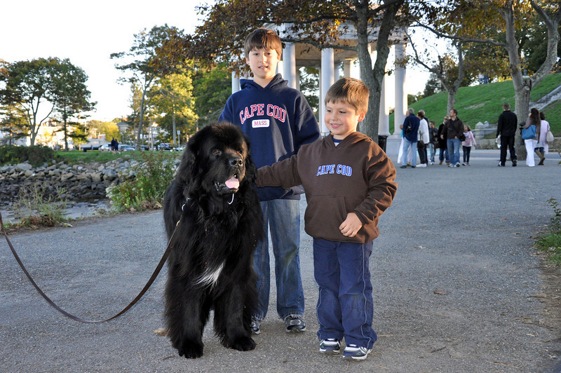 Landry Jonah and the Newfoundland.jpg