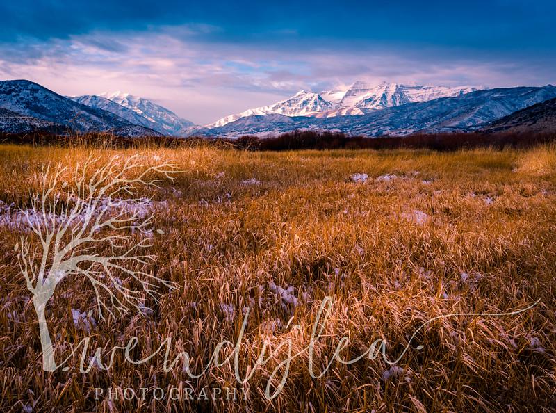 wlc winter 12-21-16December 21, 2016-3.jpg