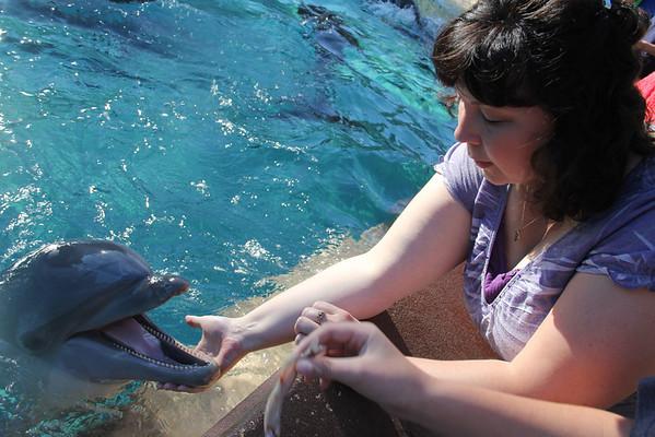 Sea World - Dec 23, 2011