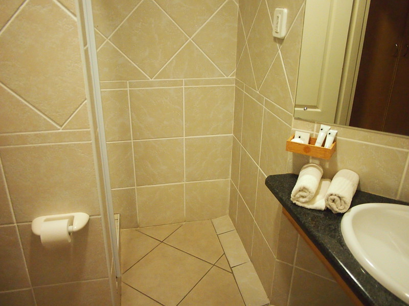P5036181-bathroom.JPG