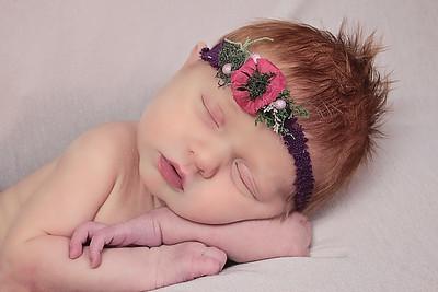 Genevieve Kate Newborns