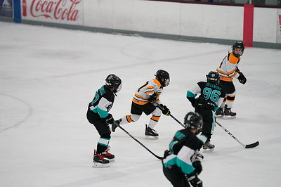 Great Neck Bruins Pee-Wee Thanksgiving Tournament 2017