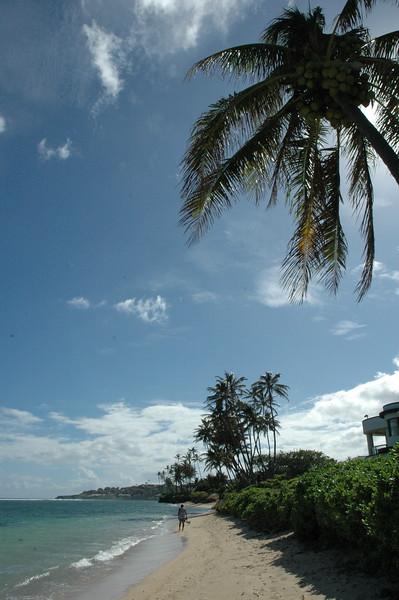 Hawaii - Kahala Beach-23.JPG
