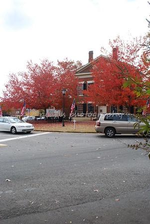 2008-11-07  Fall N GA Mtns
