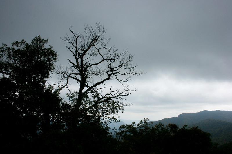 Pisgah Forest 9-30-12 113.jpg