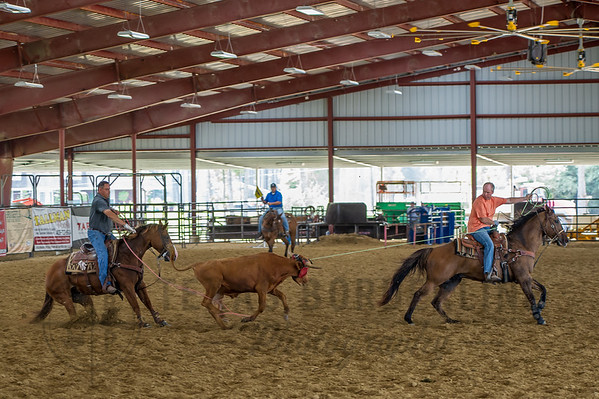 9-26-2015 T2 Arena 'Team Roping'