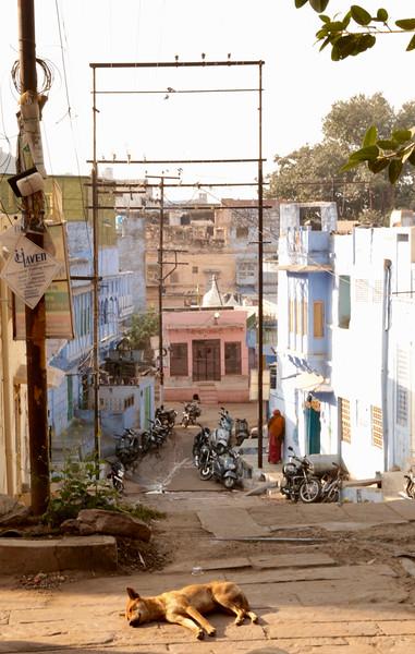 INDIA - 710.jpg