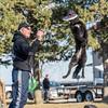Disc dog fun - Saturday, March 28, 2015 - Frame: 3107