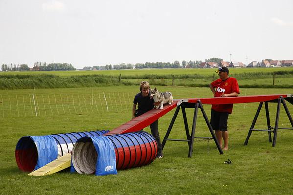 Agility workshop Friesland 2014