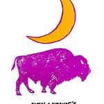 2010-11 Logos