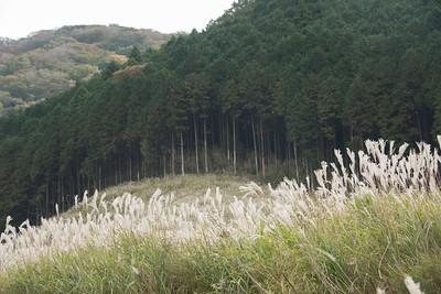 Hakone 2018 October