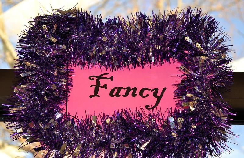 FancyNancy (2).jpg