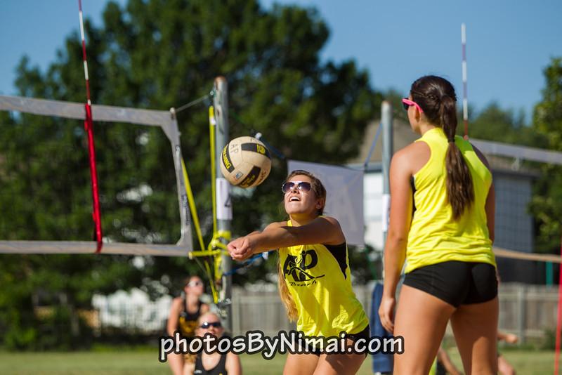 APV_Beach_Volleyball_2013_06-16_9311.jpg