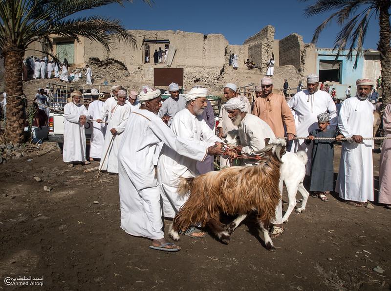 Traditional market (59)- Oman.jpg