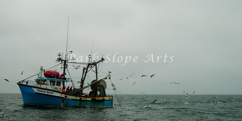 Summer Sailing-01636.jpg