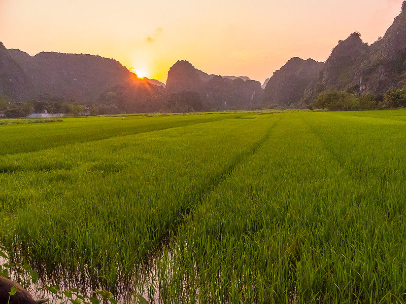 Vietnam Ninh Binh_P1090086.jpg