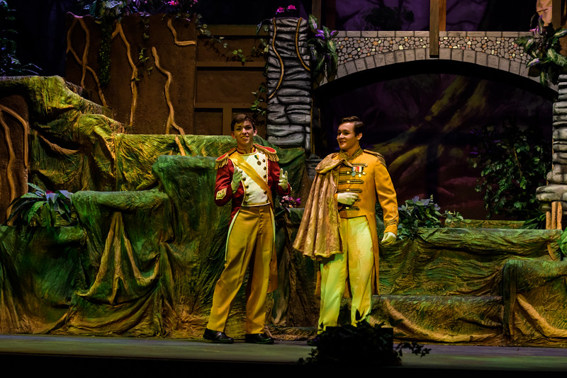 20150423 Into the Woods8858.jpg
