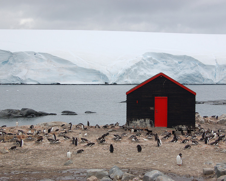 Antarctica: Port Lockroy (UK)
