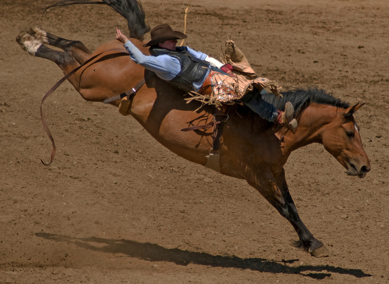 COOMBS RODEO-2009-3517A.jpg
