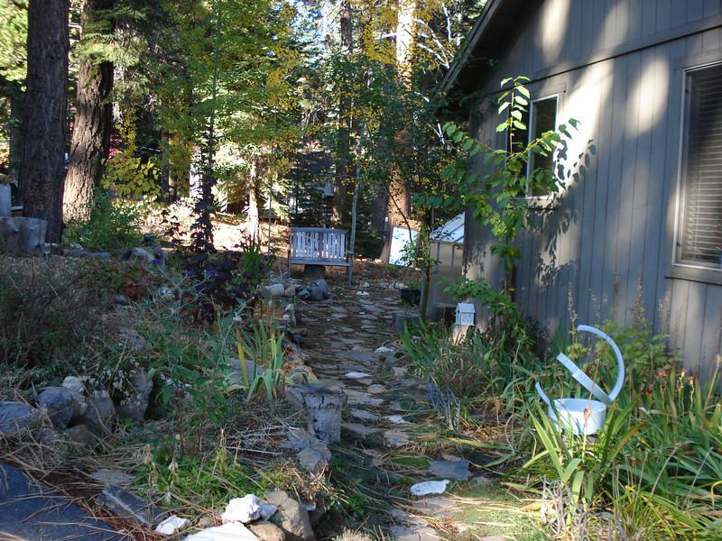 Front Garden 10-20-2010